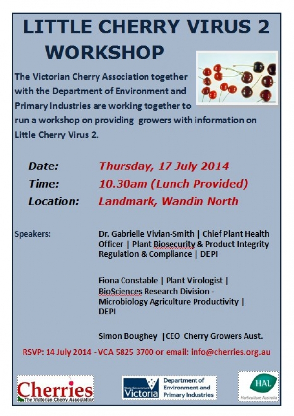 LITTLE CHERRY VIRUS 2 WORKSHOP - Thursday 17 Jul 2014