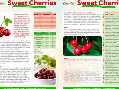 Cherry Health Report